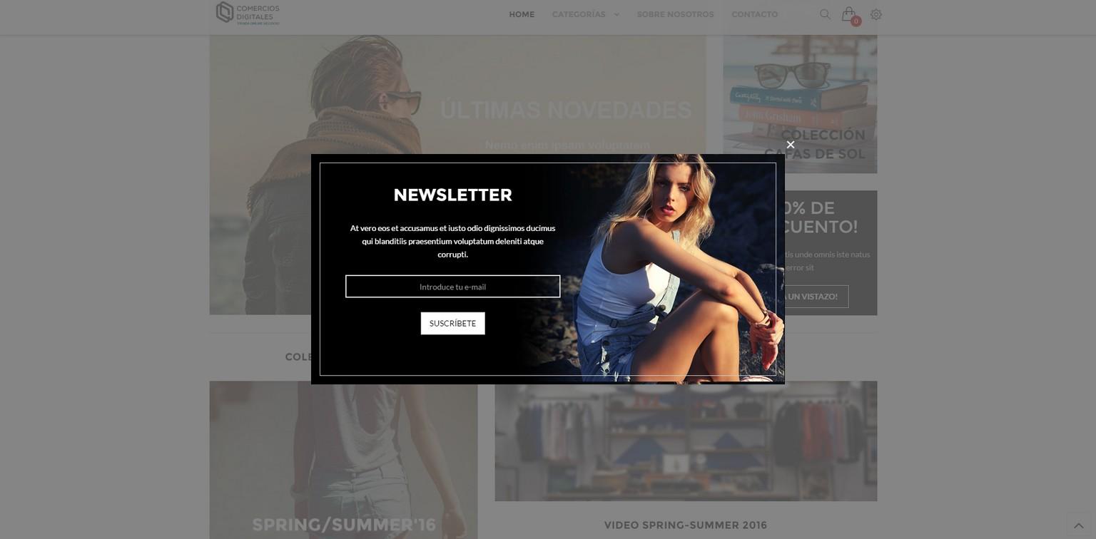 ejemplo tienda online negocio 2