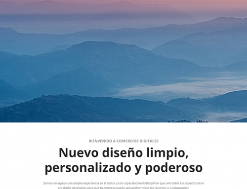 Web Profesional Demo 6