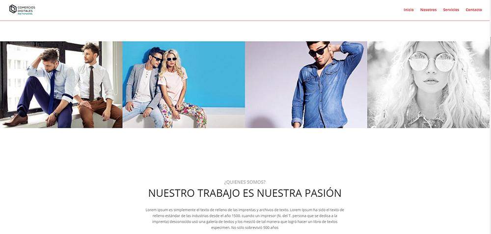 ejemplo web profesional 6