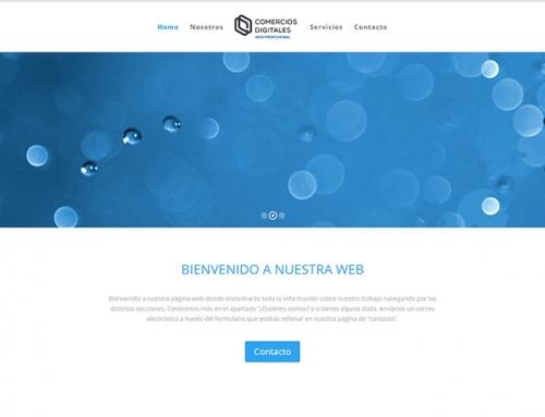Web Profesional Demo 4