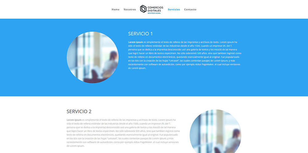 ejemplo web profesional 4