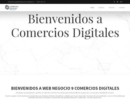 Web Negocio Demo 9