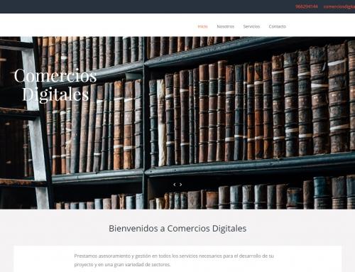Web Negocio Demo 11
