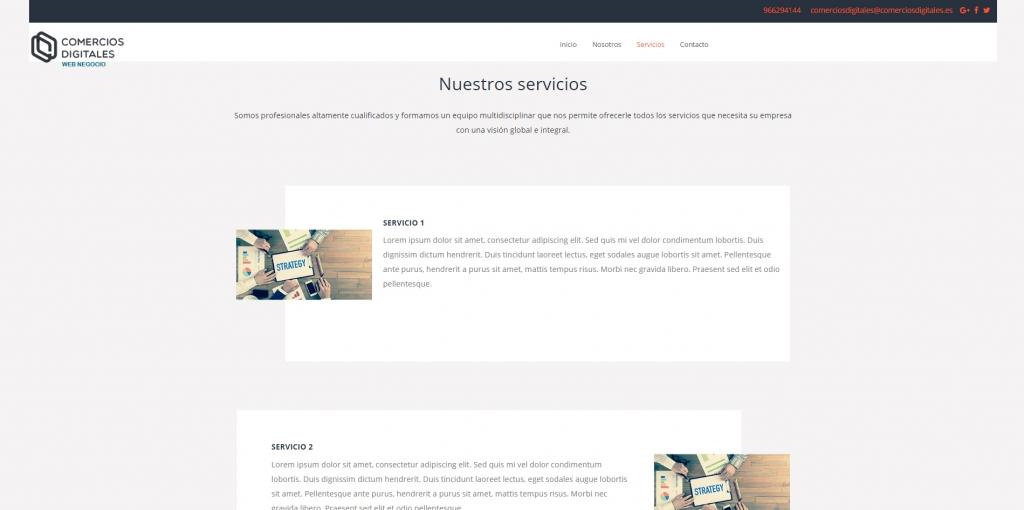 ejemplo web negocio 11